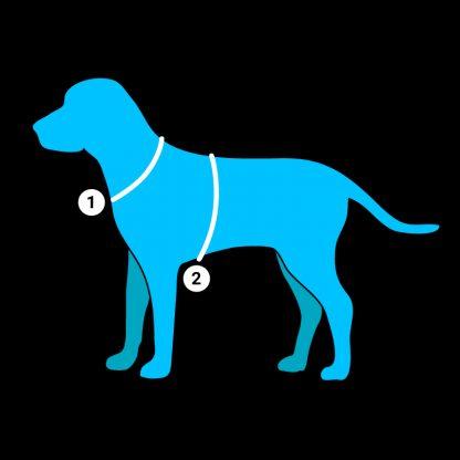 Maßnehmen schöne Warnweste für Hunde Bunter Hund Signalweste reflex neon fair Bielefeld